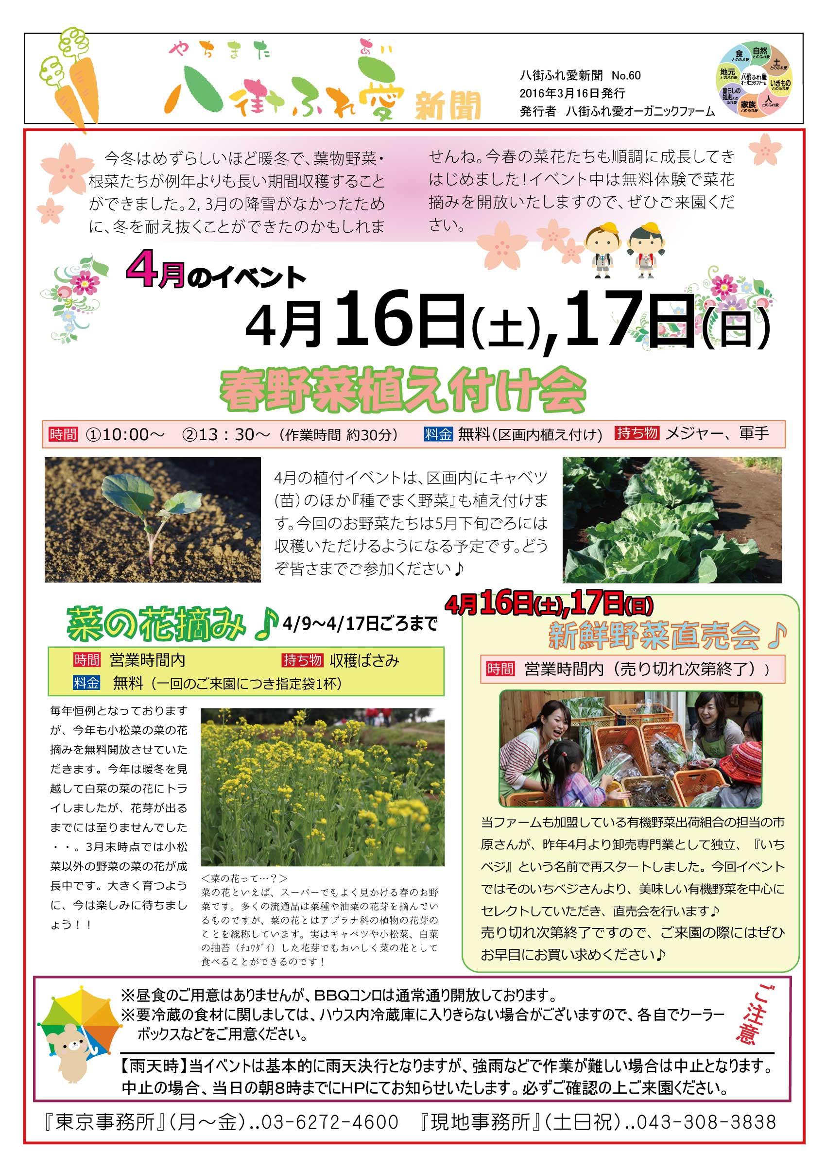 春野菜植え付け会 菜の花摘み♪新鮮野菜直売会♪